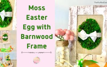 Moss Easter Egg with Mock Barnwood Frame Easy DIY