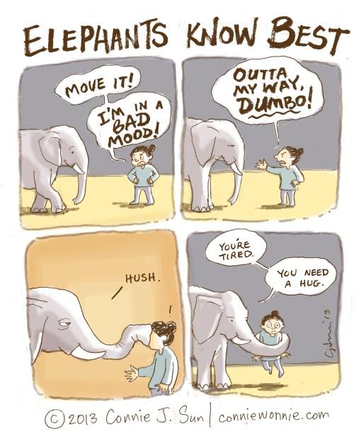 28 drawing elephants know best w800