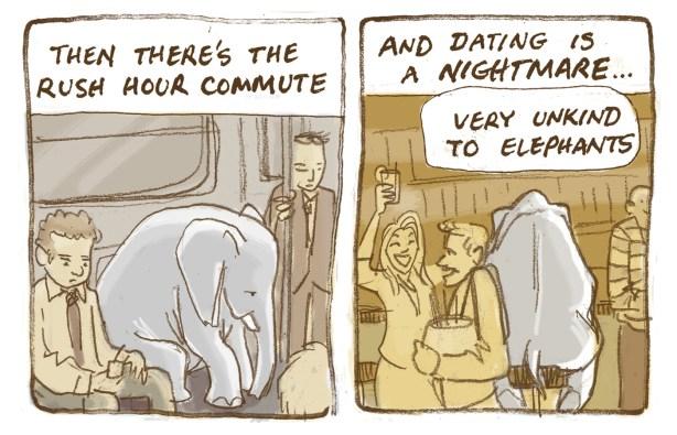 33 elephant 3