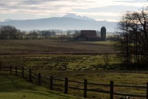 arlingtonfarm