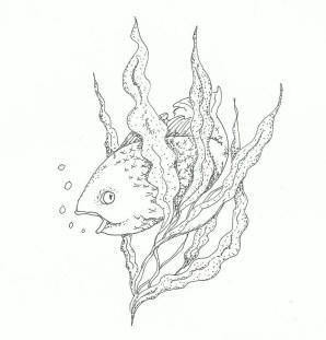 fins in kelp