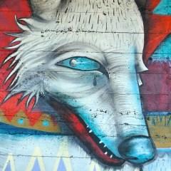 Wolf Graffiti