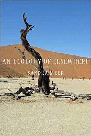 Ecology of Elsewhere