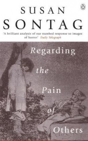 regarding-the-pain-of-others