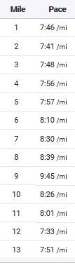 Hal Marathon Split Times