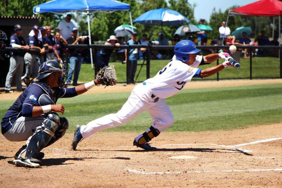 Sophomore David Metzgar attempts a bunt in the ninth inning against Northern Colorado at Hardt Field on May 3. The Roadrunners beat the Bears 7-6. Marisel Maldonado/The Runner