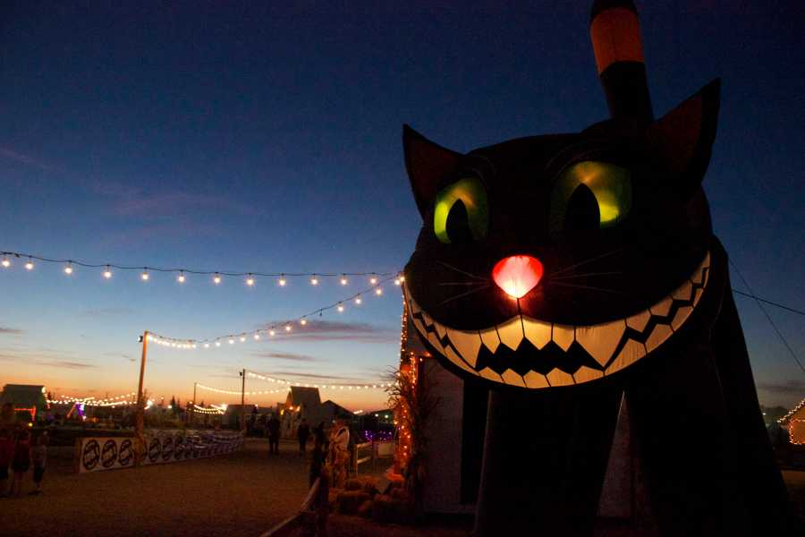 The Bakersfield Halloween Town is an attraction for the community and is running until Nov. 1. The big black cat is located at Halloween Town on Riverlakes Drive on Oct. 22. Photo by Bre Williams/The Runner
