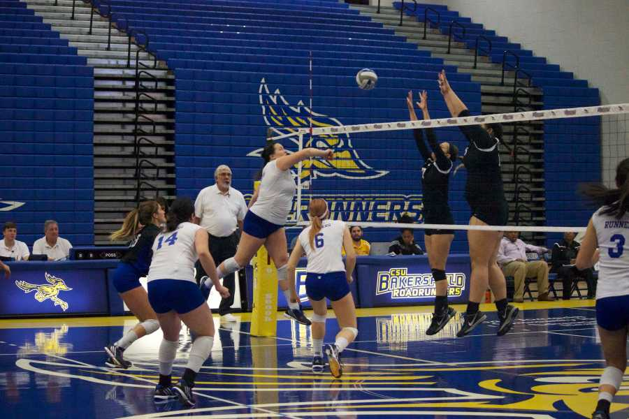 CSUBs+senior+outside+hitter+Kelsey+Sawyer+spikes+a+ball+past+the+Chicago+State+defense+on+Saturday%2C+Nov.+14+in+the+Icardo+Center.%0APhoto+by+Bre+Williams%2FThe+Runner