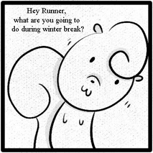 The Adventures of Runner, Nut and Kit