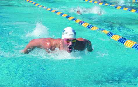 CSUB swimmer wins 4 national titles