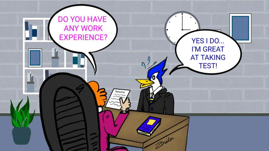 Work experience by Ana and Ary Dominguez
