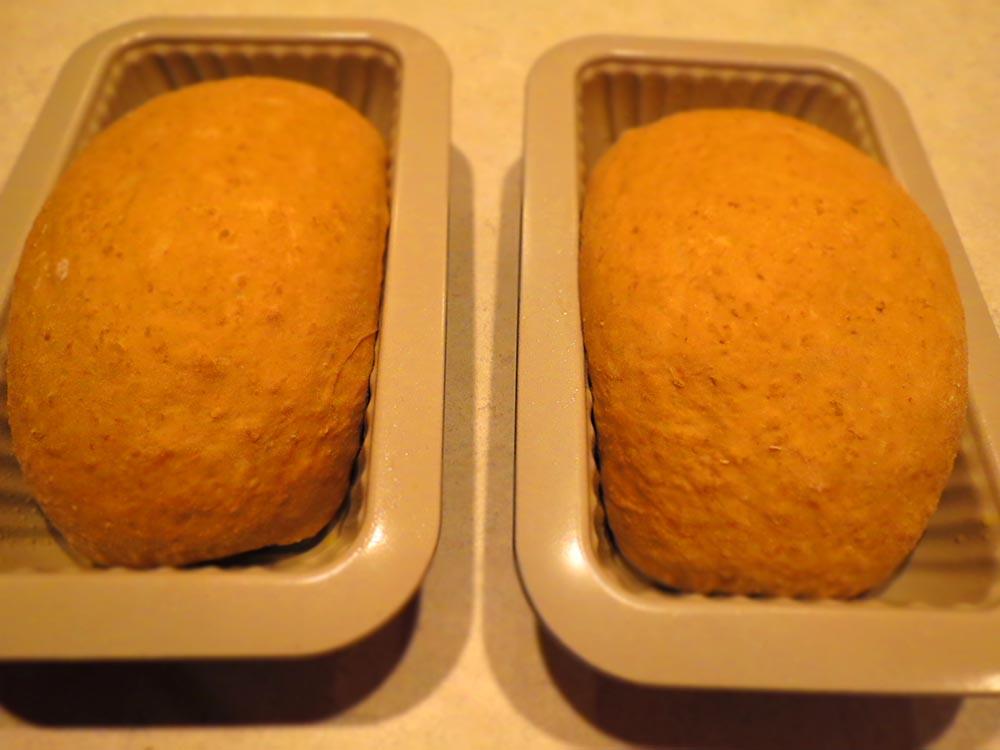 raised-loafs