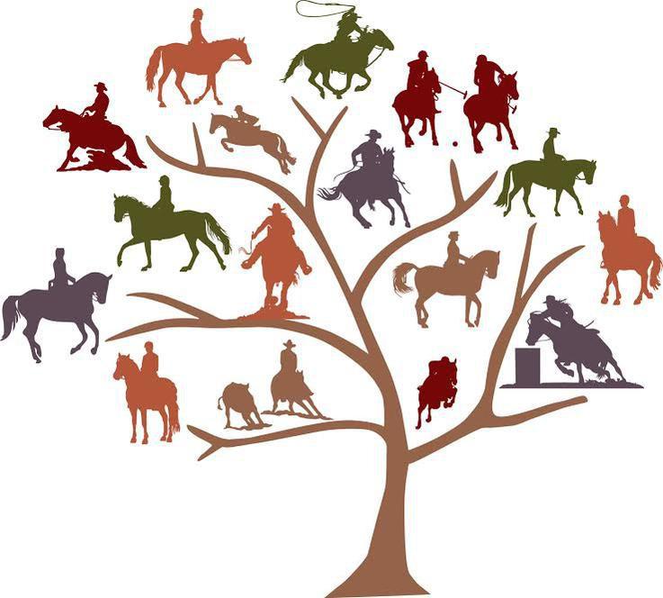 The Saddle Tree