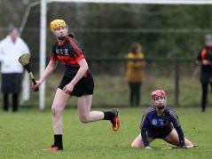 Camogie 6
