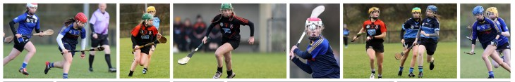 Camogie preview