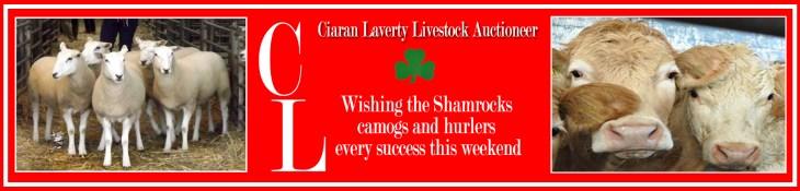 Ciaran Laverty advert copy-fix