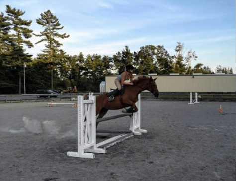 Horseback riders encounter unique hurdles