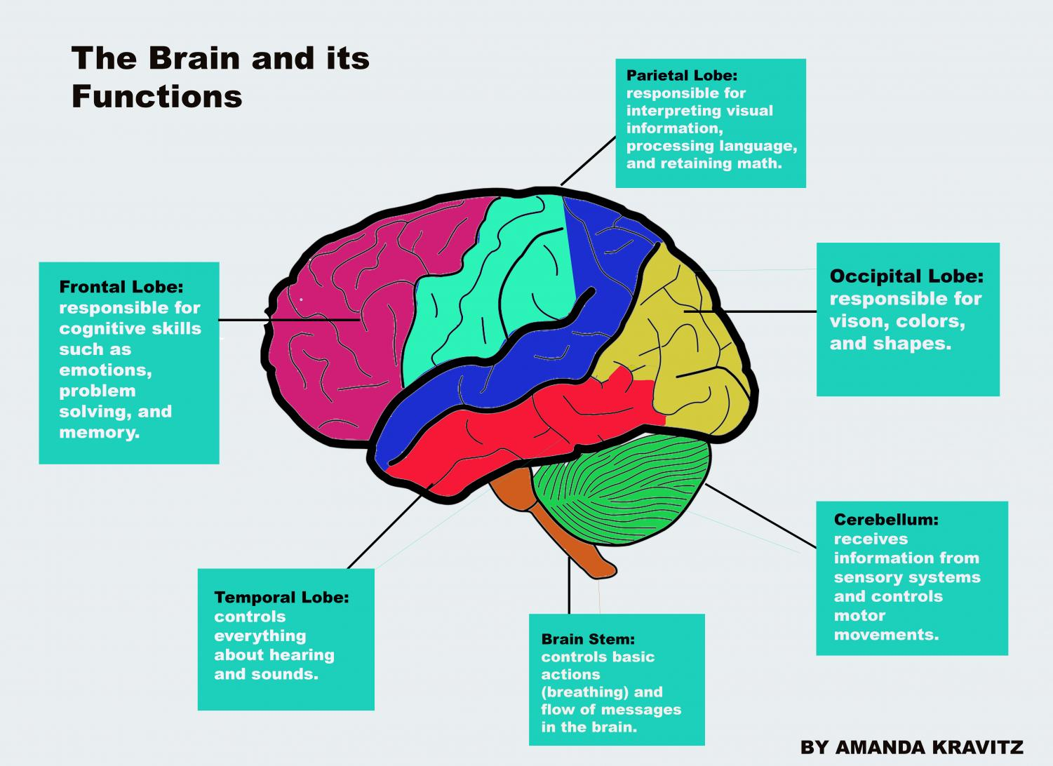 ADHD deserves to be taken seriously – The Sagamore