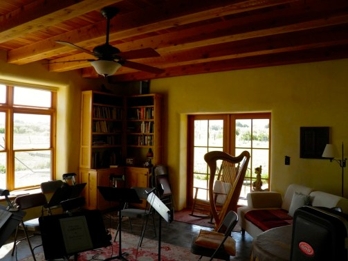 Douglas Fir beamed ceiling with hand dyed plaster walls in the music room.