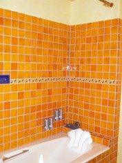 Custom tile in first floor bathroom.