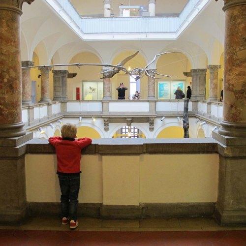 Herbst mit Kindern in München - Palaeontologie