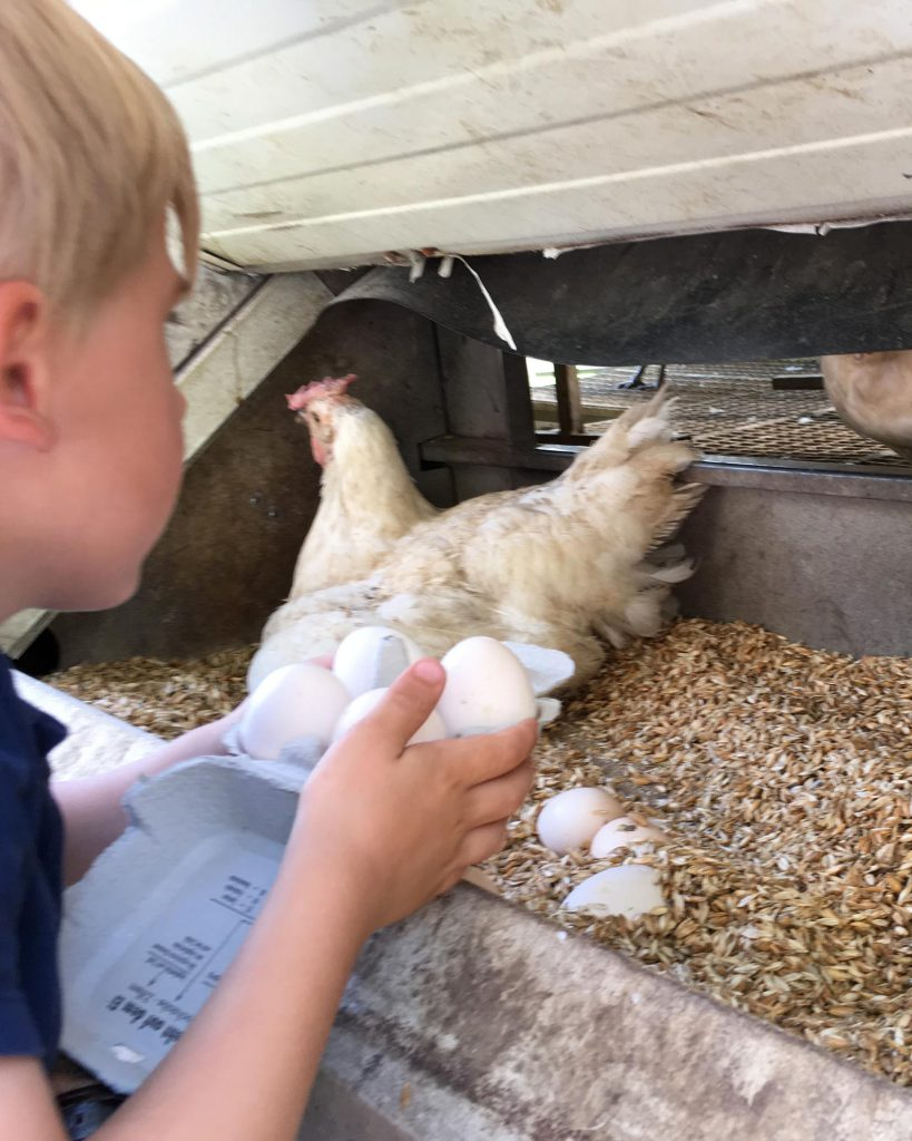 München mit Kindern im Sommer - Hermannsdorfer