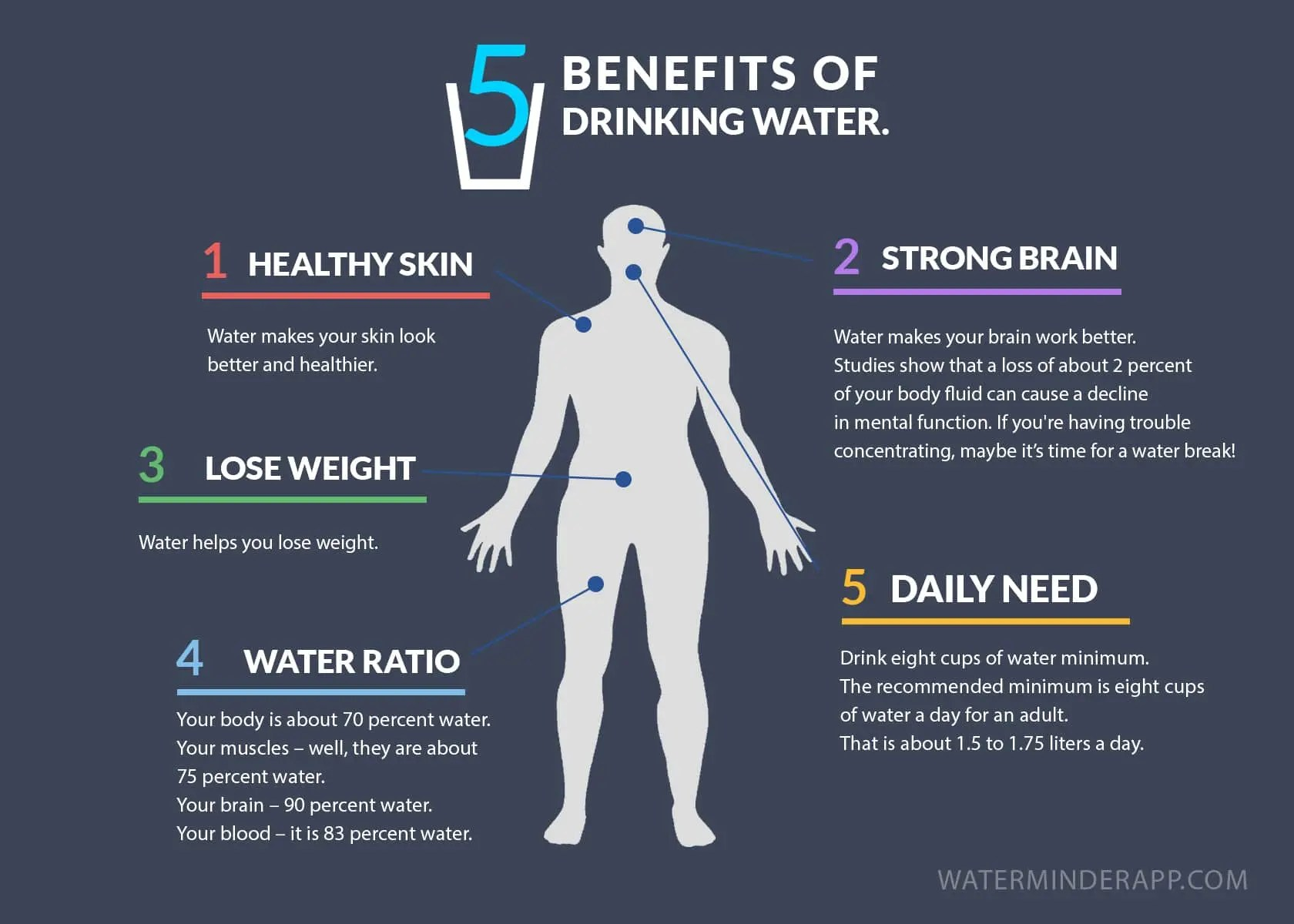 the importance of hydration while on the ketogenic diet - the salt box