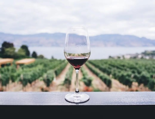 Best Wineries in The Western Cape