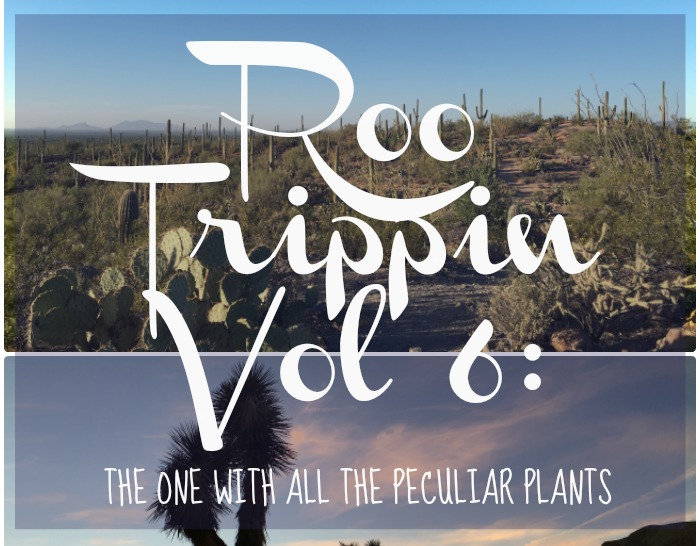 The Salt Stories: Roo Trippin Vol 6: The One with All the Peculiar Plants