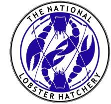 NLH adobe logo file jpeg