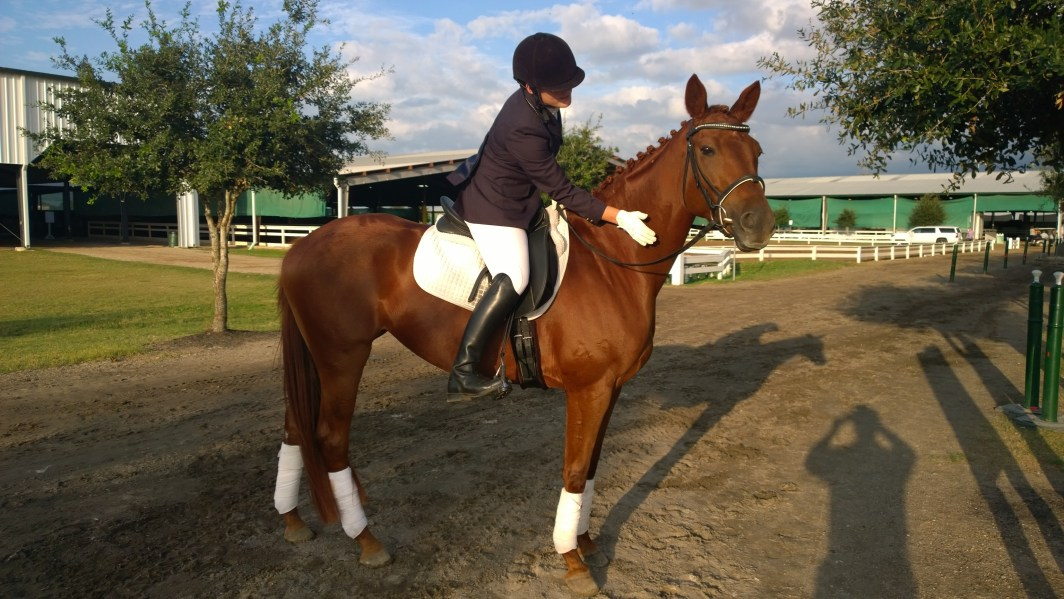 Bailey and Joy experiencing early success in the dressage arena