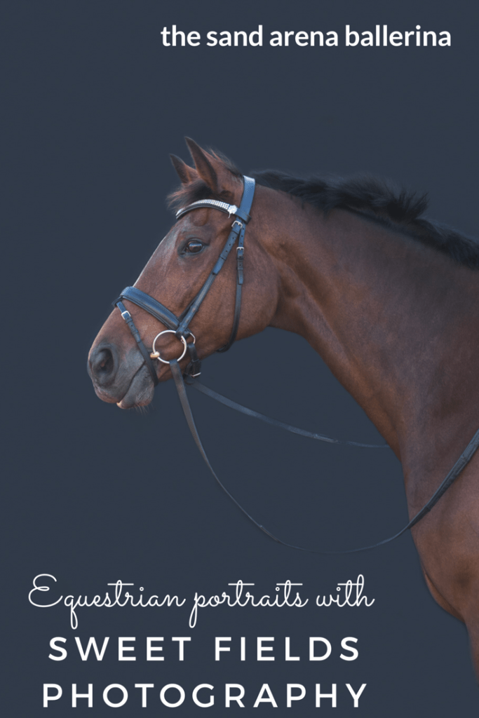 Having Equine portraits taken by Chrystle of Sweet Fields Photography was a brilliant opportunity to get some great shots of my mare as well as getting a behind the scenes sneak peek