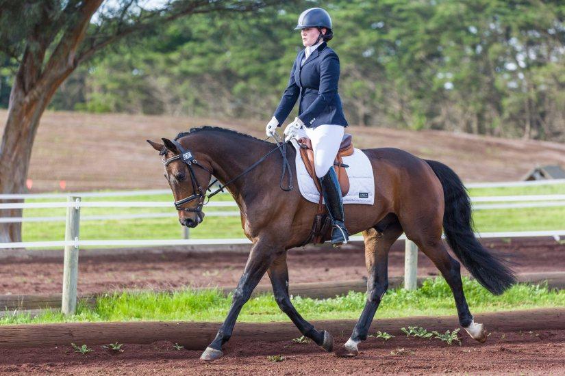 Para-equestrian TIlda Carnegie and her horse novice horse Sparkling Shiraz aka Turbo