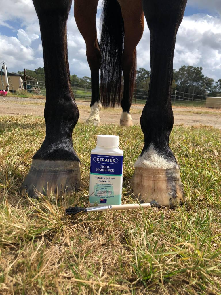 Keratex Hood Hardener is the first product that I am adding into Nonie's hoof care regime
