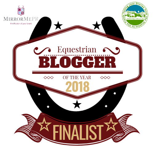The Sand Arena Ballerina is a Finalist in the 2018 CS&E Blog Awards