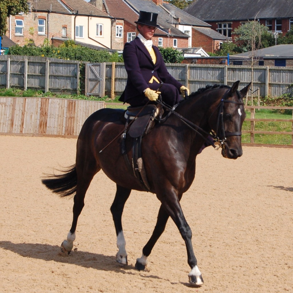 Katie began riding side saddle when she was six years old and has now established herself as a serious competitor and trainer