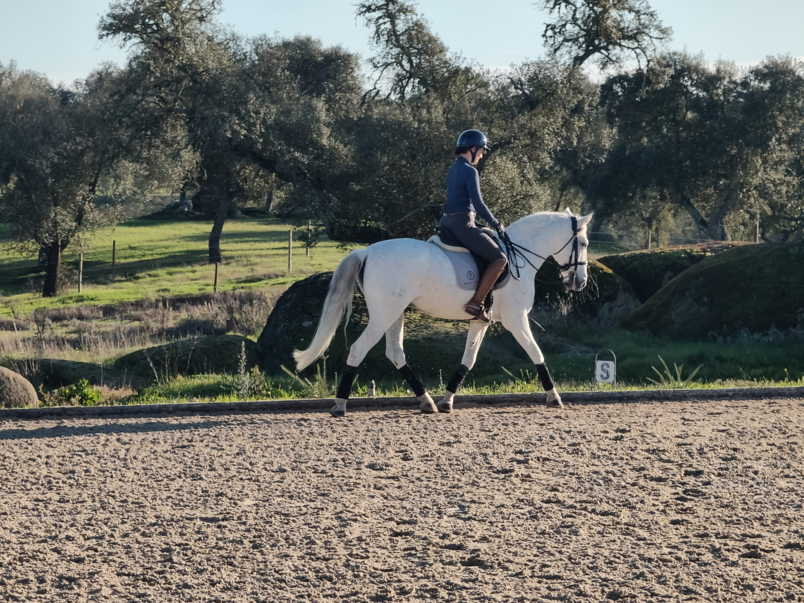 me riding Zig Zag in a double bridle during my stay at Monte Velho in Portugal