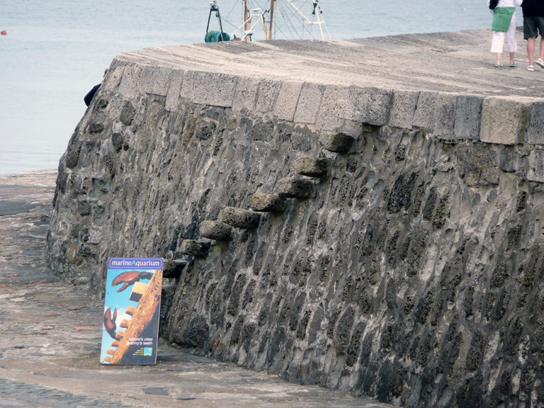 Lyme Regis, The Cobb - Grannie's Teeth (the exact spot where Louisa Musgrove fell...)