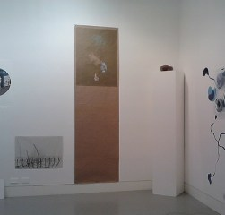 installation view, screenprint, 2012