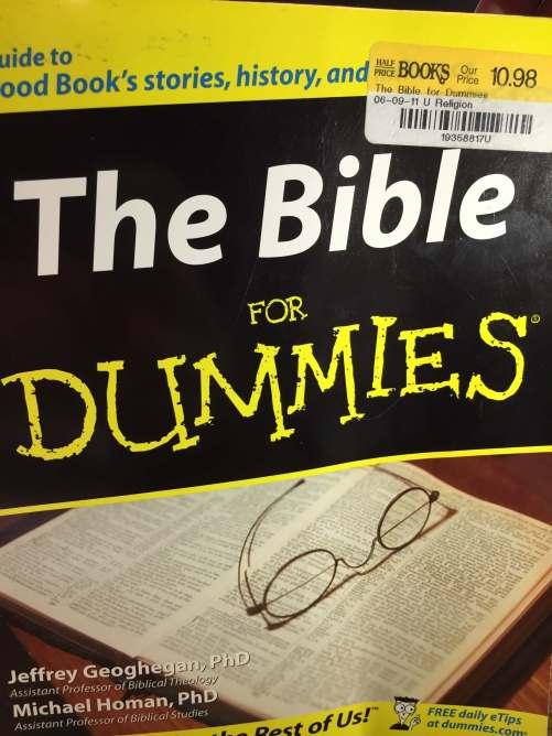 biblefordummies