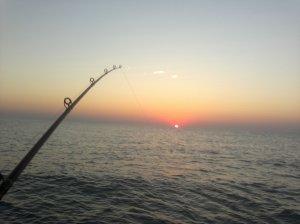 Catching bait before sun