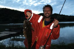 A Mydo Luck Shot Mini caught flathead aka flagtail in the Umzimkulu River