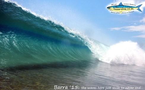 The_Sardine_Barra_15