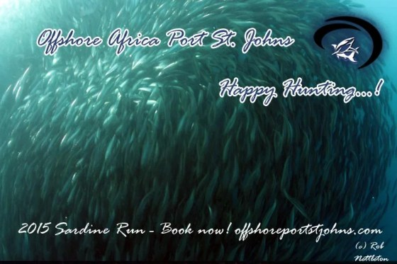 OffshoreAfricaPromo005