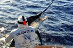 Captain Duarte Rato and friends Fishing The Great Barrier Reef with Team Tradition Charters