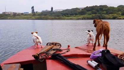 Umzimkuklu fishing with the dogs