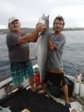 King mackerel off Southport, Natal Lower South Coast