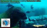 Underwater Africa Ocean Observatory
