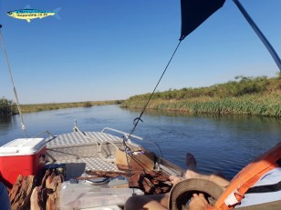 Cruising the Okavango Delta in Botswana