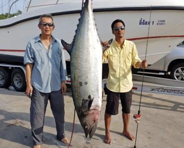 Giant King Mackerel 72kgs by Voyages de Peche